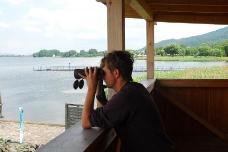 Blick vom Vogelbeobachtungsturm