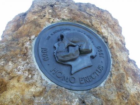 Homo Erectus in der Steinrinne in Bilzingsleben